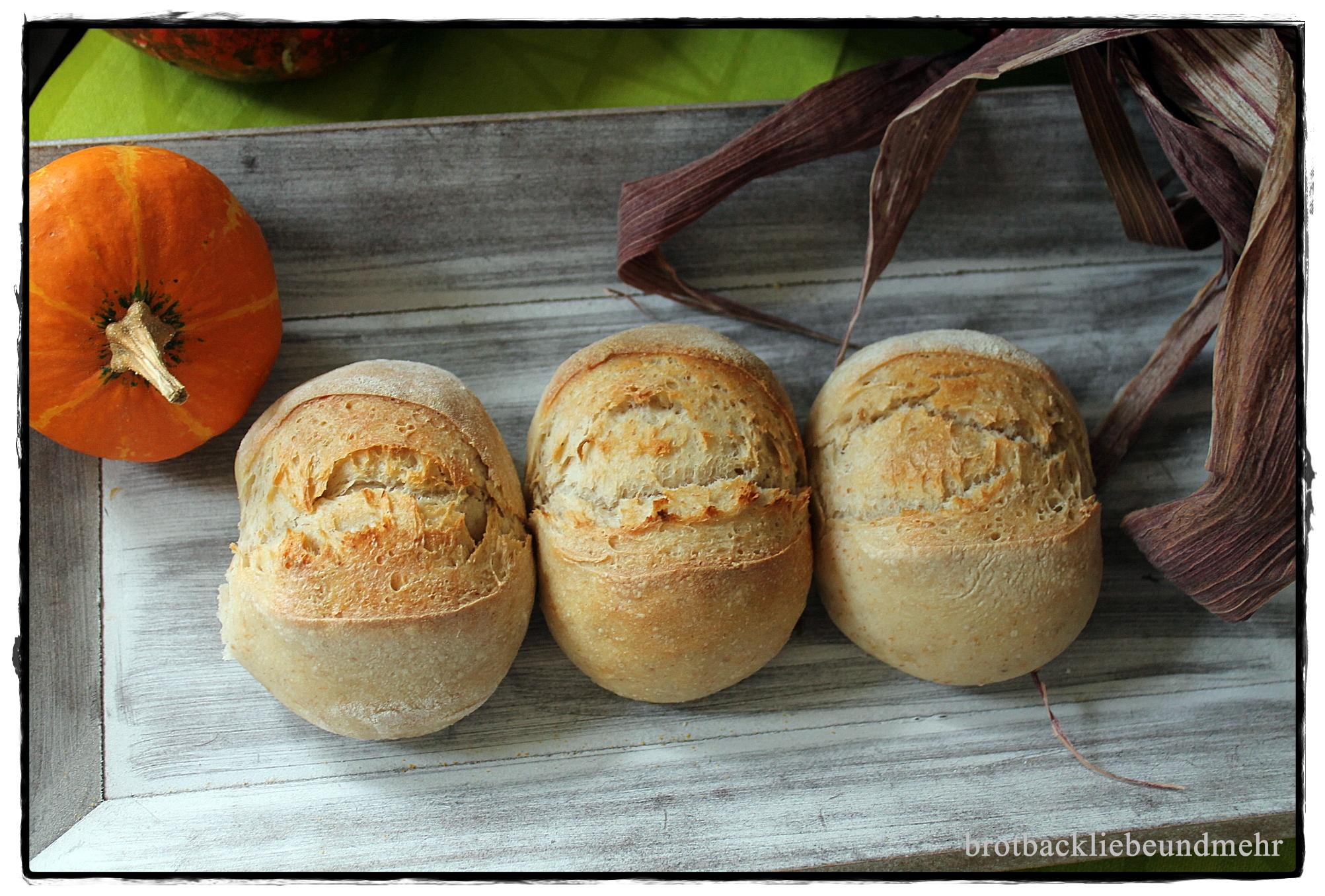 Amerikanischer Kühlschrank Quark : Italienische kartoffel quark brötchen brotbackliebe undmehr