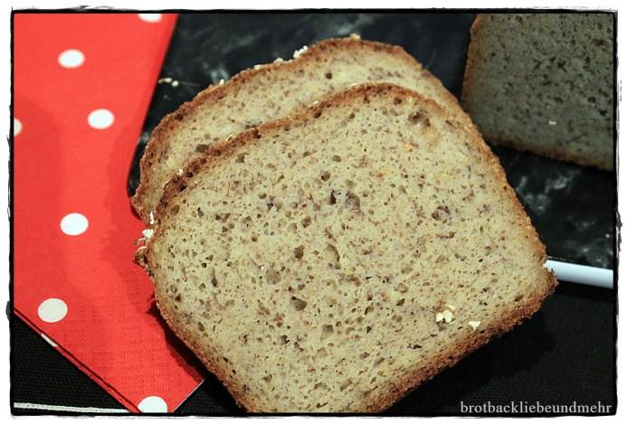 Sauerteig – Mischbrot glutenfrei
