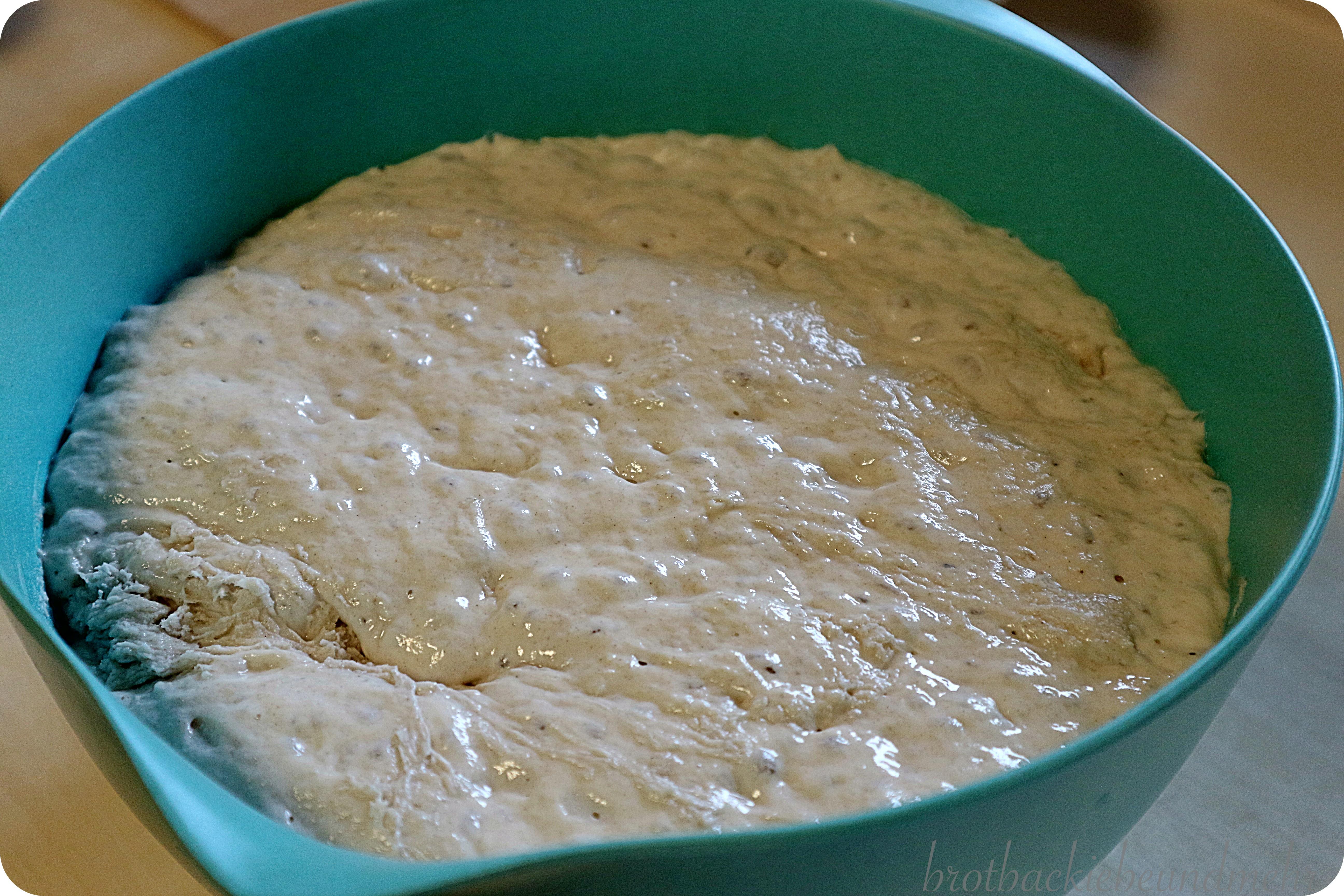 Foto 3 No-knead-Brot Teig nach der Stockgare