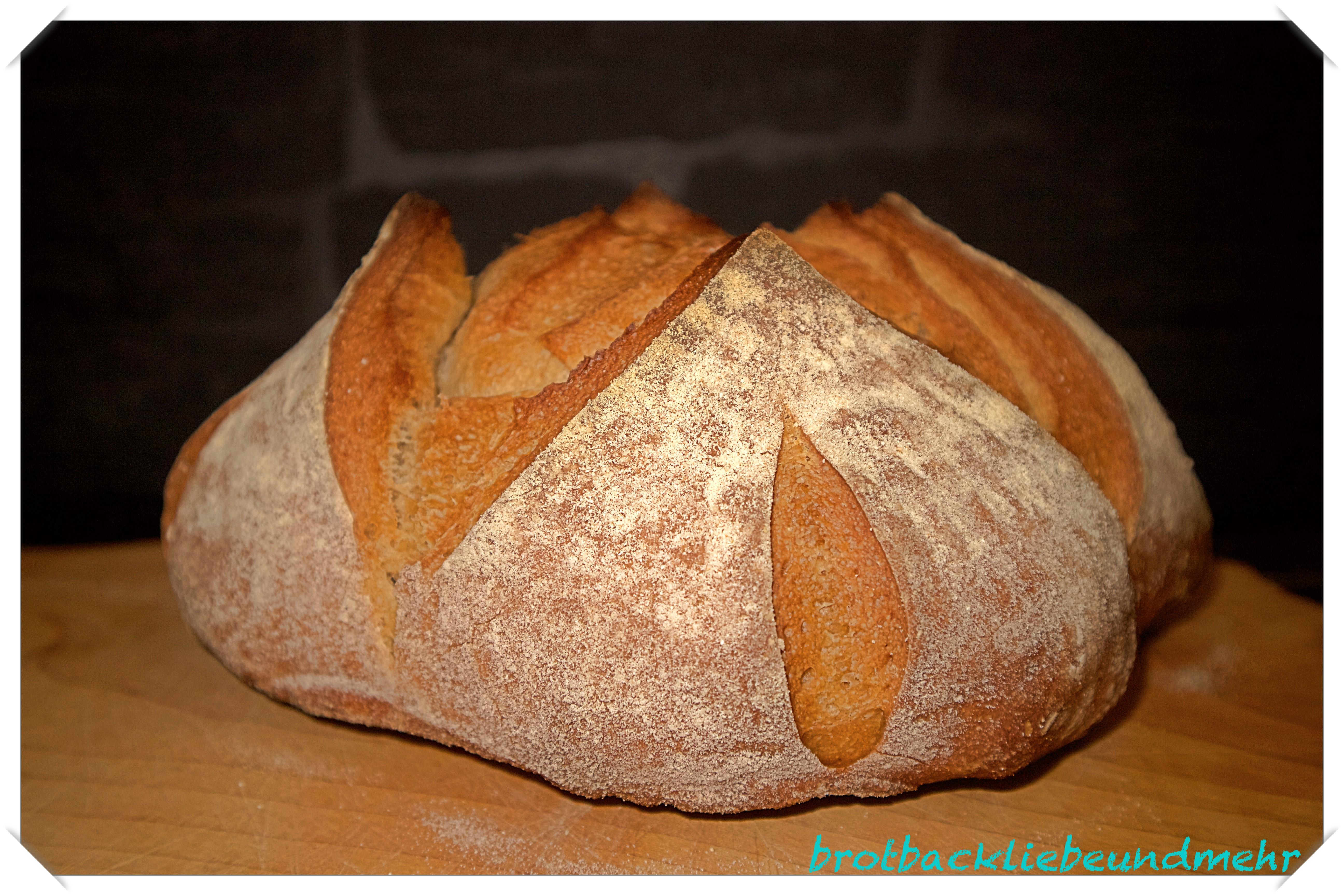 Foto 8 Einsteigerkurs Fertiges Brot